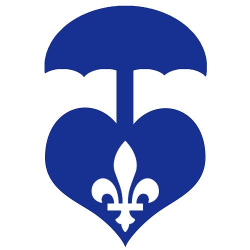 Listée dans le top 20 des compagnies d'assurance vie au Québec, la UV Mutuelle propose de bonnes solutions.