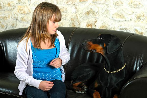 https://www.dropbox.com/s/eacf9uhh3fjv5xr/enfant-attaquee-par-un-chien-est-ce-couvert-par-assurance-habitation-au-bas-saint-laurent.jpg?dl=0 (image title : Votre chien est-il protégé par une assurance habitation à Rimouski ou au Bas-Saint-Laurent ?