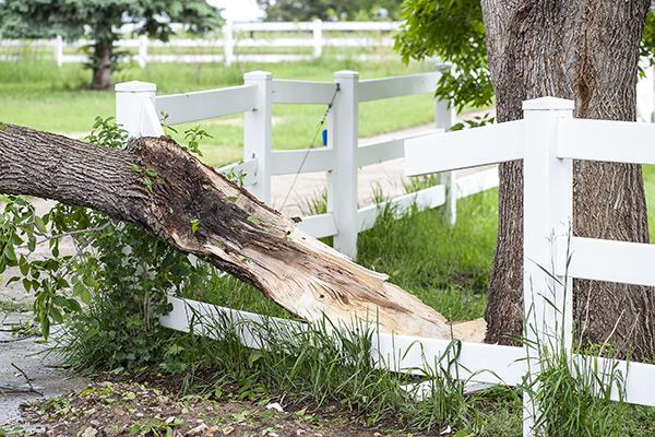 Que rembourse votre assurance habitation dans l'éventualité de dommages commis par des vents violents dans les Laurentides ?