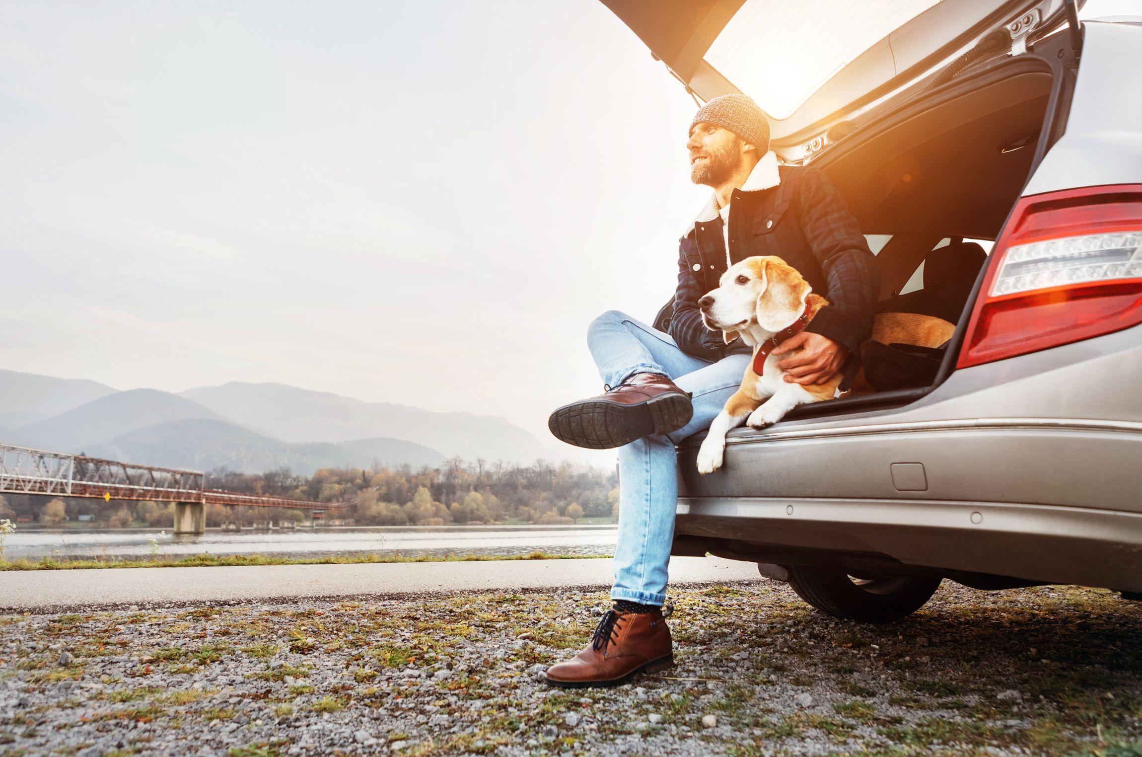 assurance auto covid 19