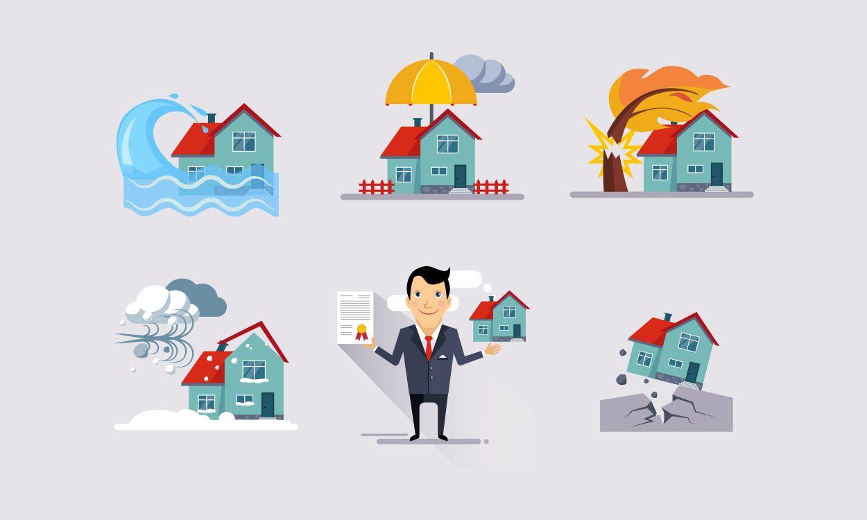 assurance habitation levis